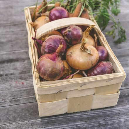 vegetables, table, harvest, wooden, Canon EOS 5D MARK III