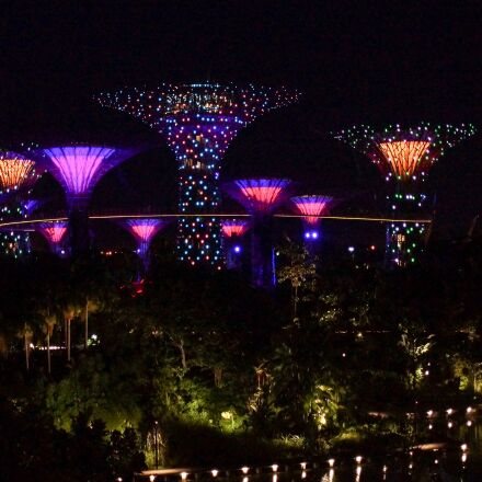 singapore, marina, trees, Sony SLT-A65