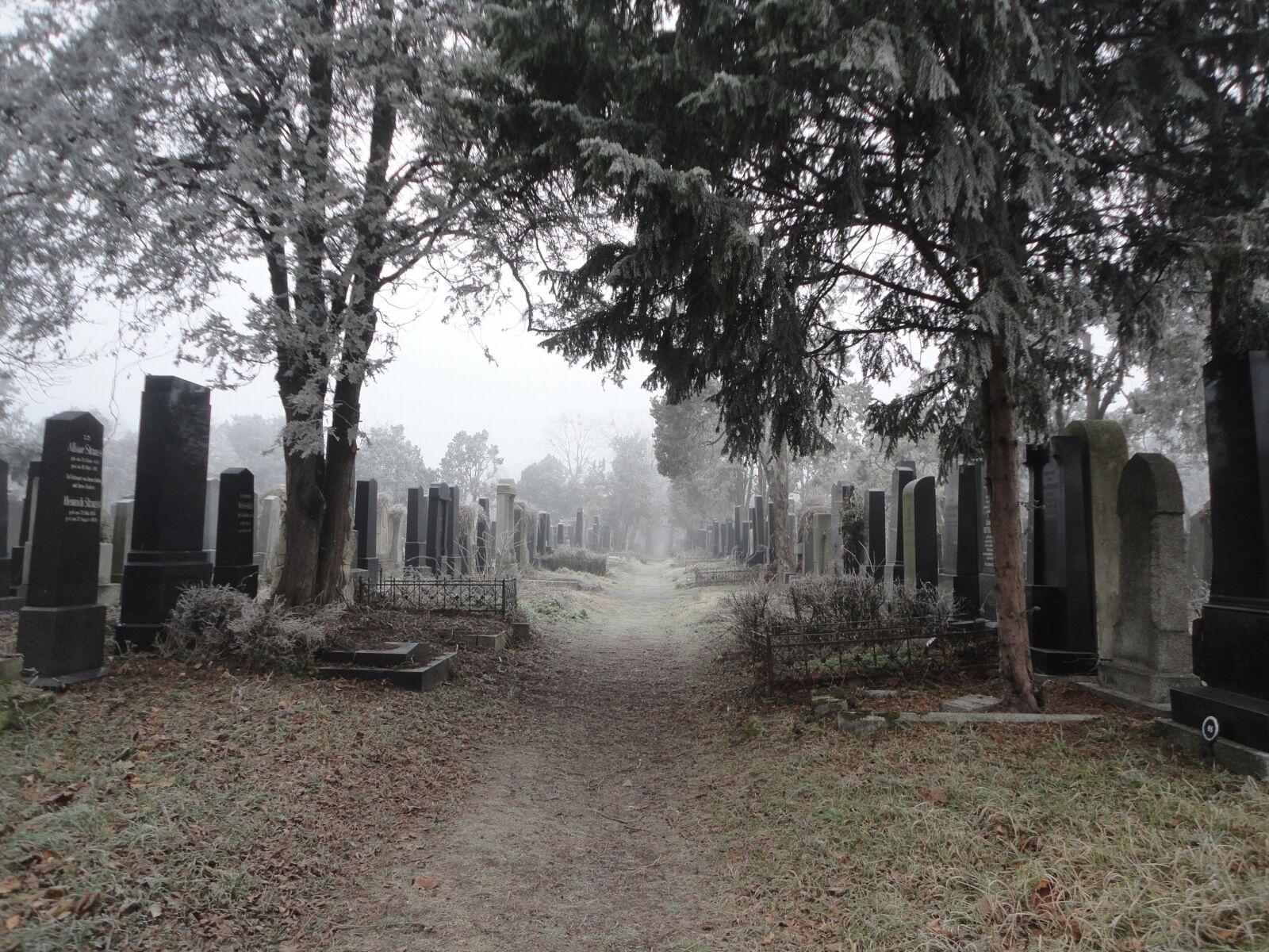 "Sony DSC-W350 sample photo. ""Cemetery, central cemetery, vienna"" photography"