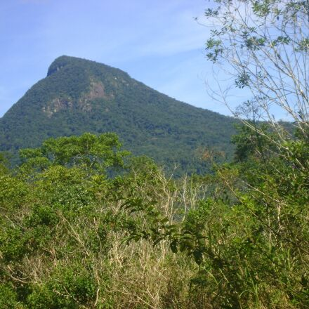 mountain, shrubs, green, Sony DSC-S730