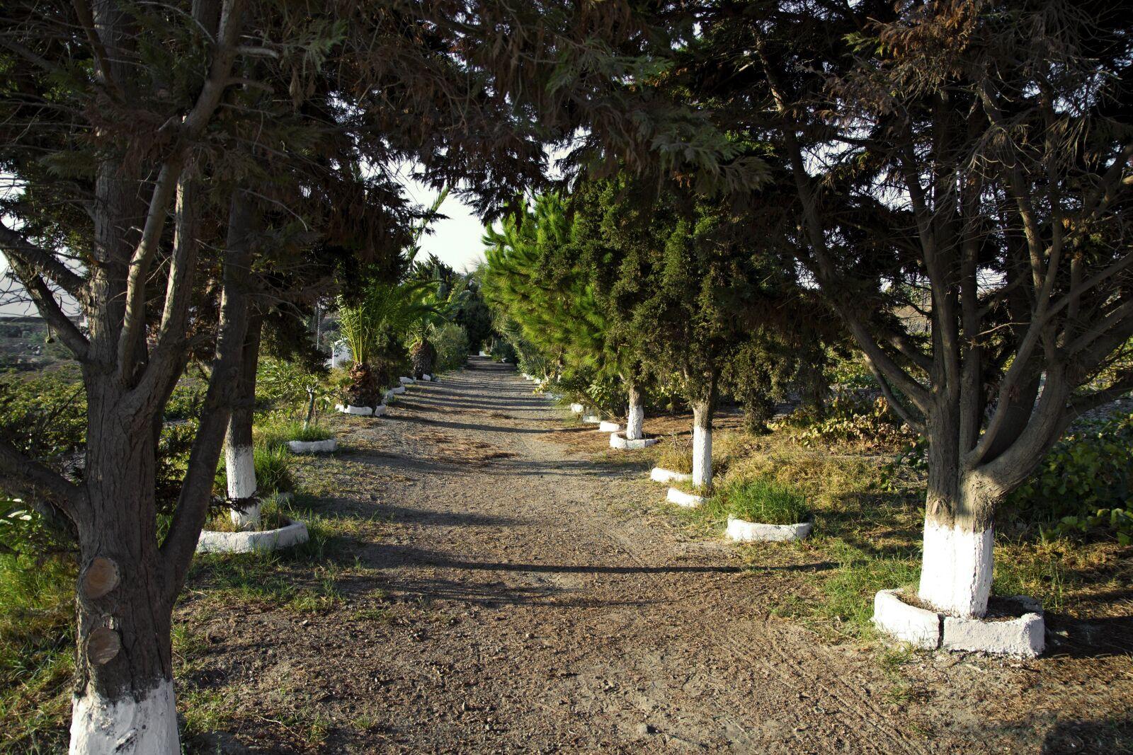 """Canon EOS 1100D (EOS Rebel T3 / EOS Kiss X50) sample photo. """"Santorini, alley church, karterados"""" photography"""