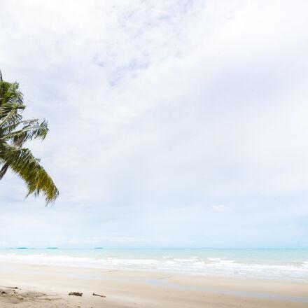 beach, blue, coconut, trees, Nikon D70S