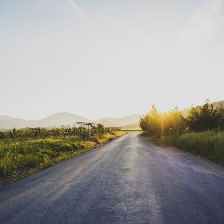 road, nature, sunny, vintage, Samsung NX2000