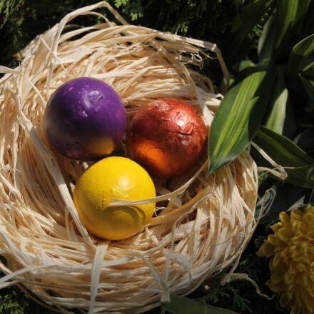 easter, rabbit, egg, Canon EOS 60D