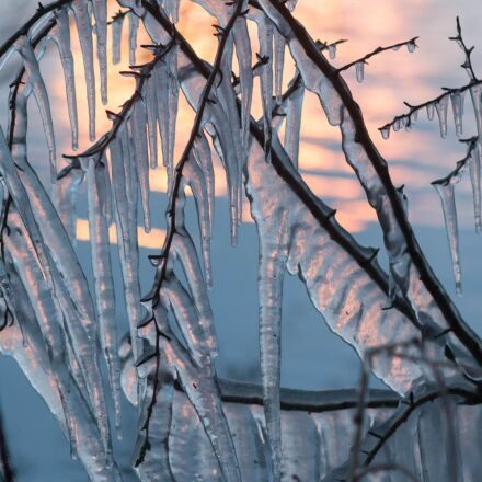 icicle, light, winter, Canon EOS 70D