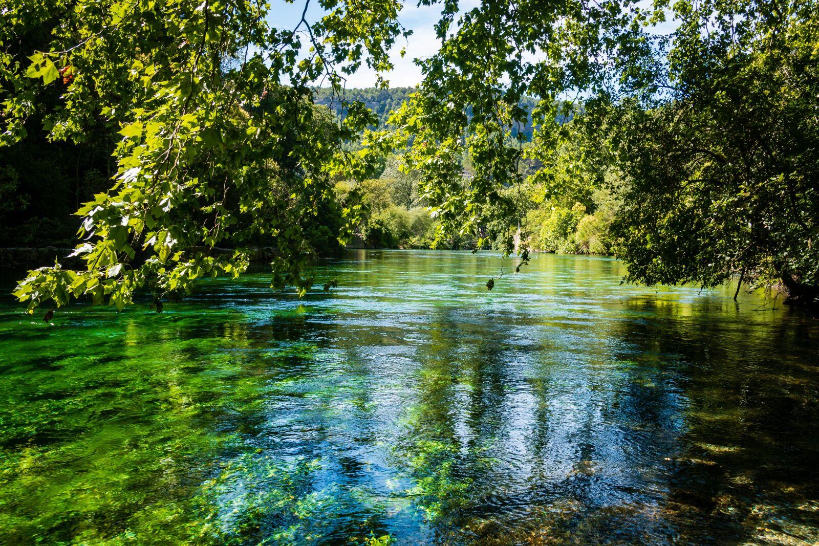 "Canon EOS 70D sample photo. ""Water, river, the sorgue"" photography"