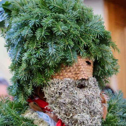 silvesterchlaus, holly, mask, Canon EOS 70D