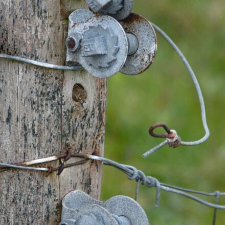 fence post, post, wood, Pentax K-50