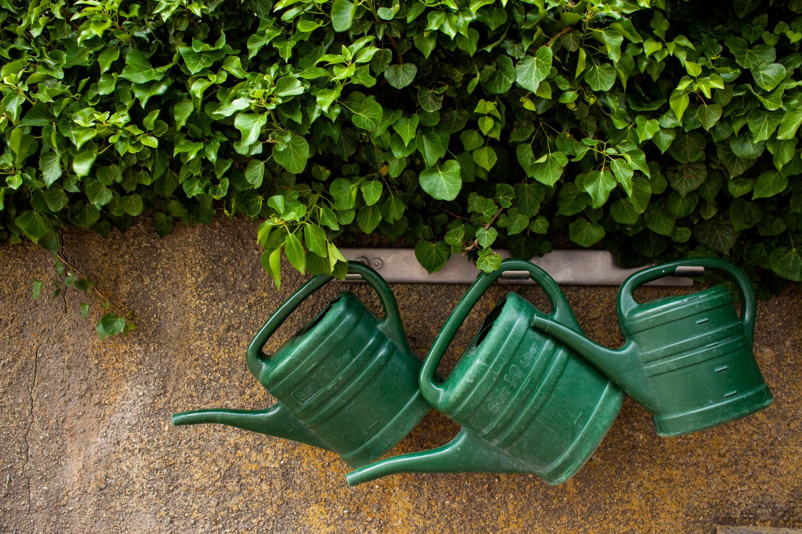 watering can, garden, casting