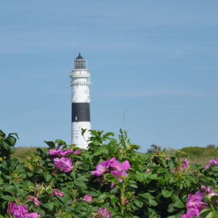lighthouse, north sea, nordfriesland, Panasonic DMC-FS16