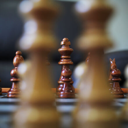 game, king, horse, chess, Canon EOS 60D