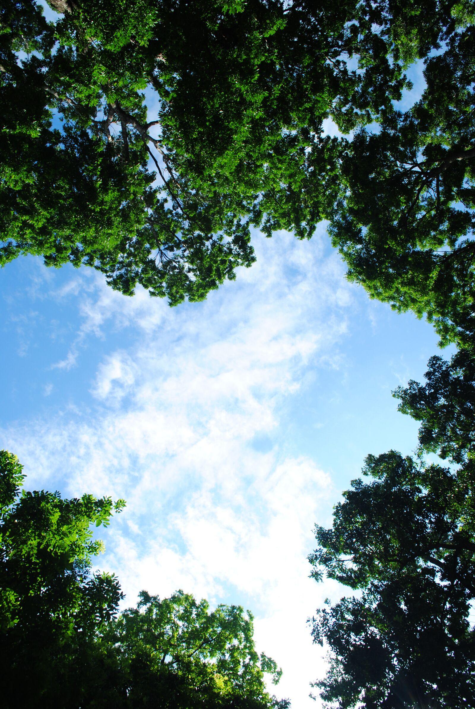 """Nikon D3000 sample photo. """"Sky, cloud, nature"""" photography"""