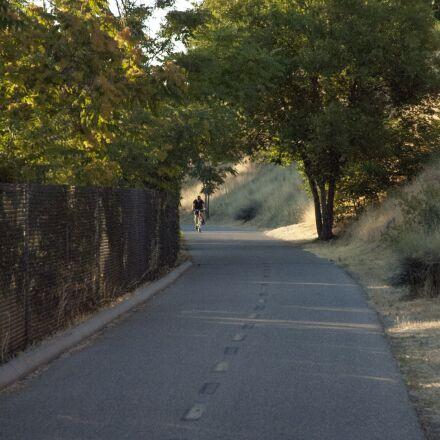 bicycle, morning, path, trees, Nikon D70S