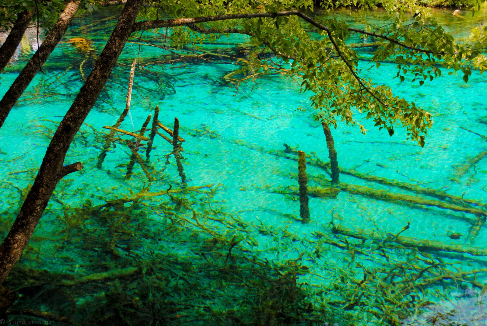 "Nikon D3000 sample photo. ""Jiuzhaigou, the scenery, landscape"" photography"