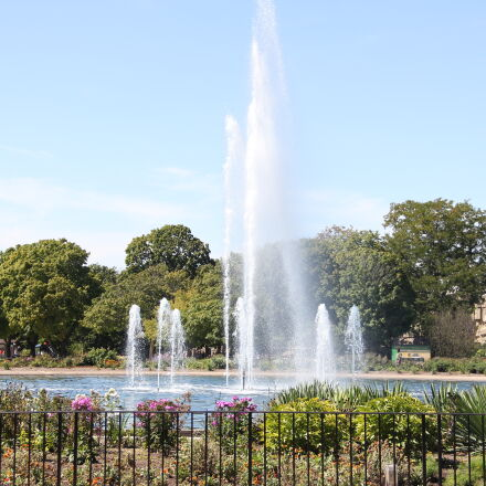 flowers, fountain, green, outside, Canon EOS 60D
