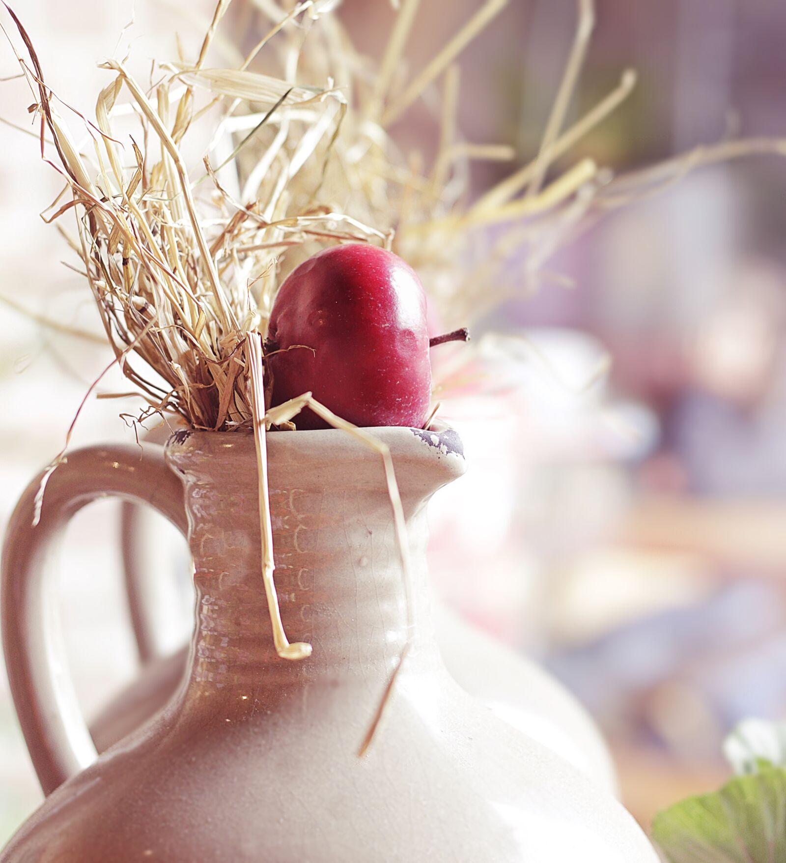 "Canon EOS 100D (EOS Rebel SL1 / EOS Kiss X7) sample photo. ""Autumn, autumn decoration, decoration"" photography"