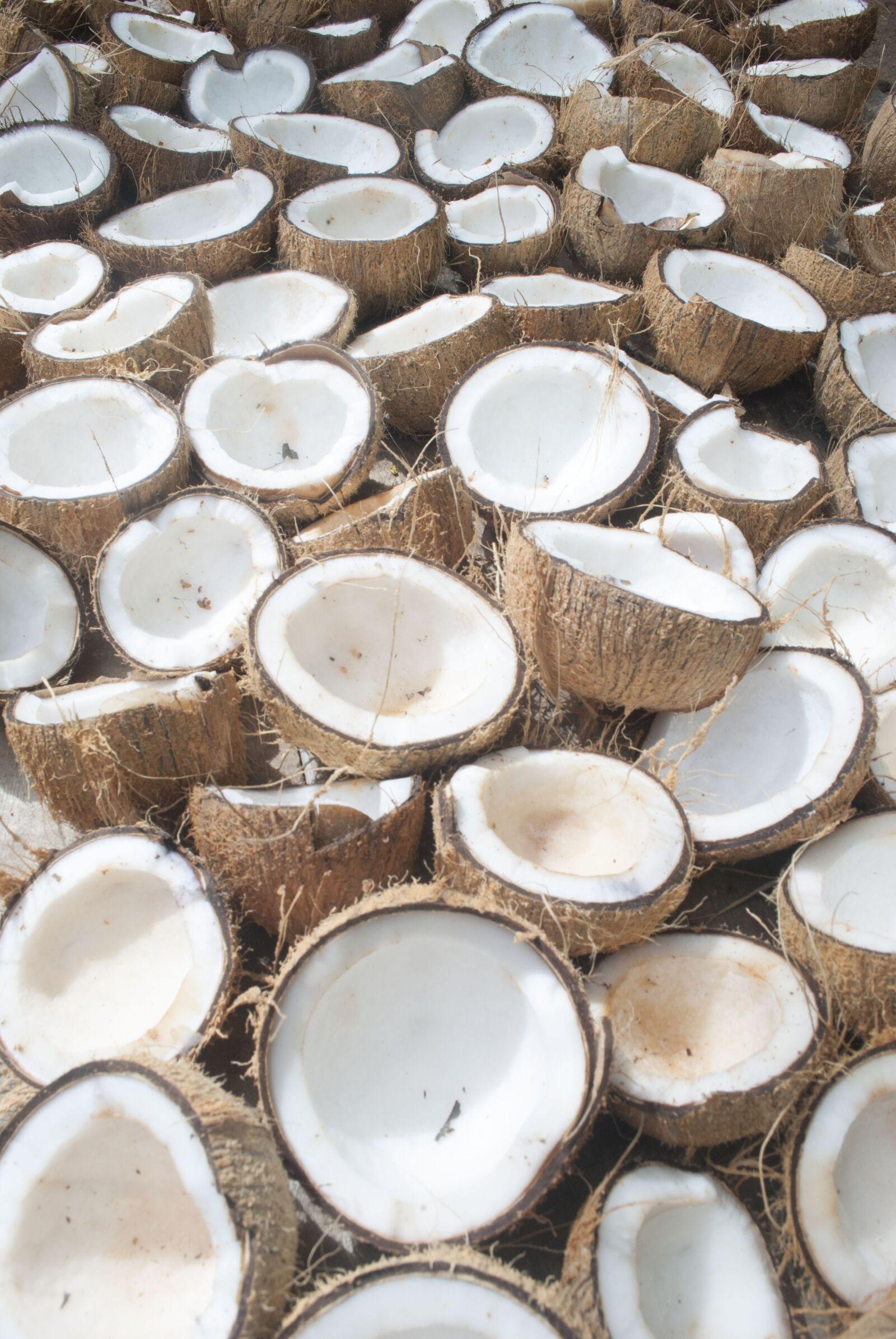 "Nikon D3000 sample photo. ""Coconut, organic coconut, organic"" photography"