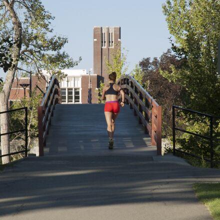 bridge, campus, college, morning, Nikon D70S