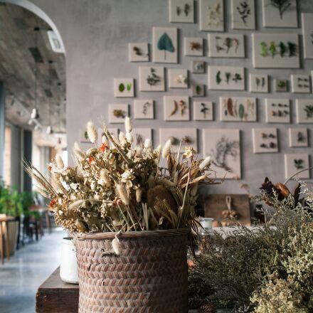 gray, café, dried flowers, Canon EOS 5D MARK II