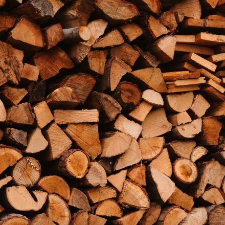 wood, tree trunks, forest, Panasonic DMC-G70