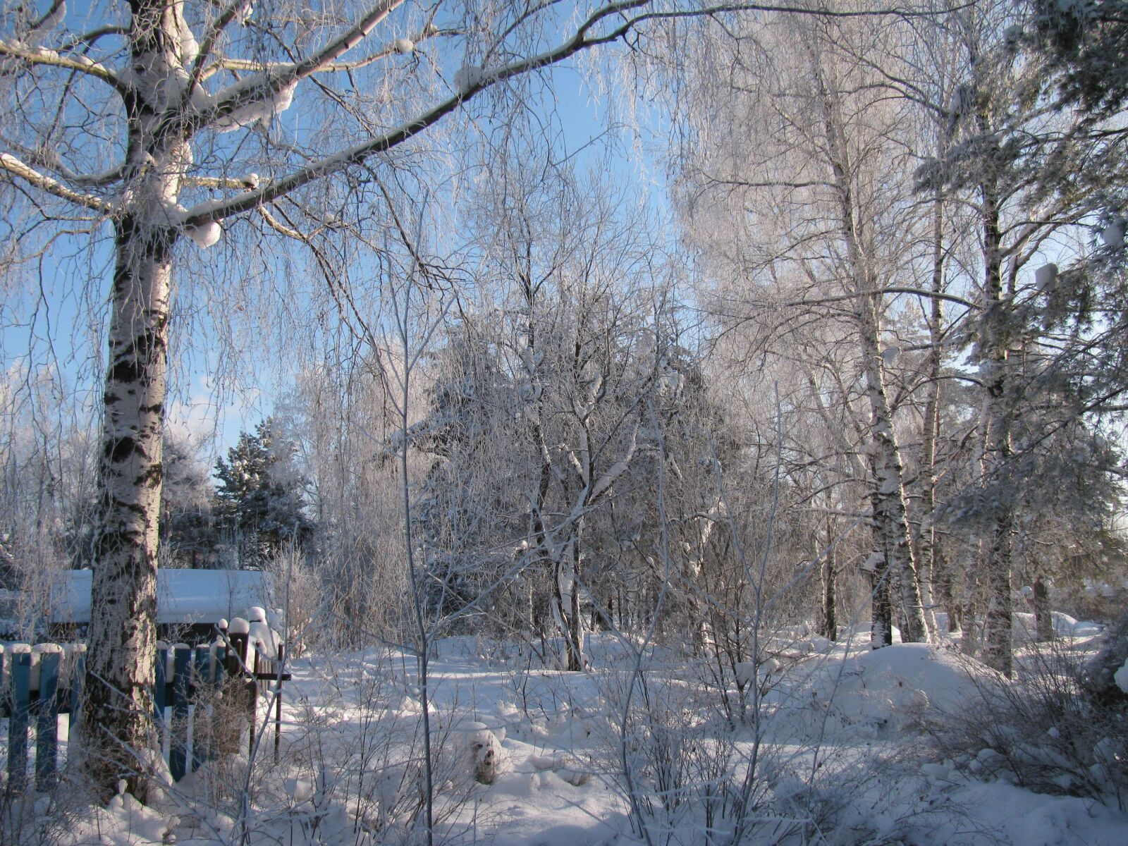"Canon PowerShot SX110 IS sample photo. ""Winter, village, snow"" photography"