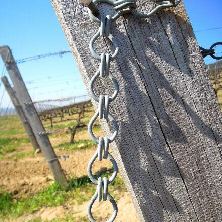 vineyard, wire, wire tensioning, Nikon COOLPIX P300