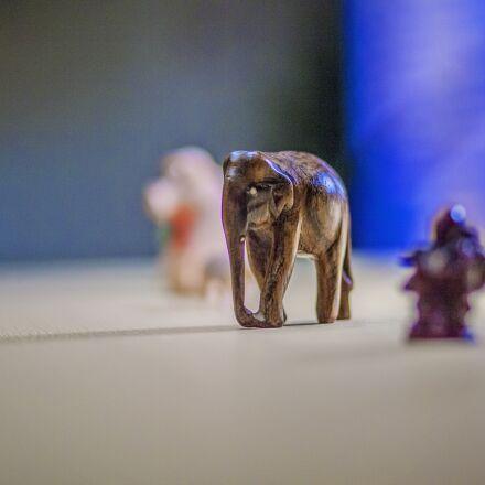 figures, miniature, animals, Canon EOS 5D MARK II