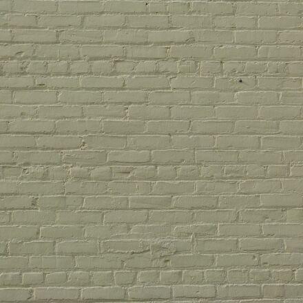 brick wall, sage, background, Panasonic DMC-FZ60