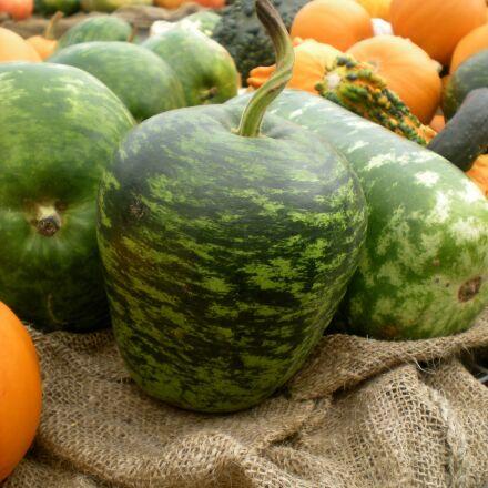 squash, vegetables, food, Nikon COOLPIX S202