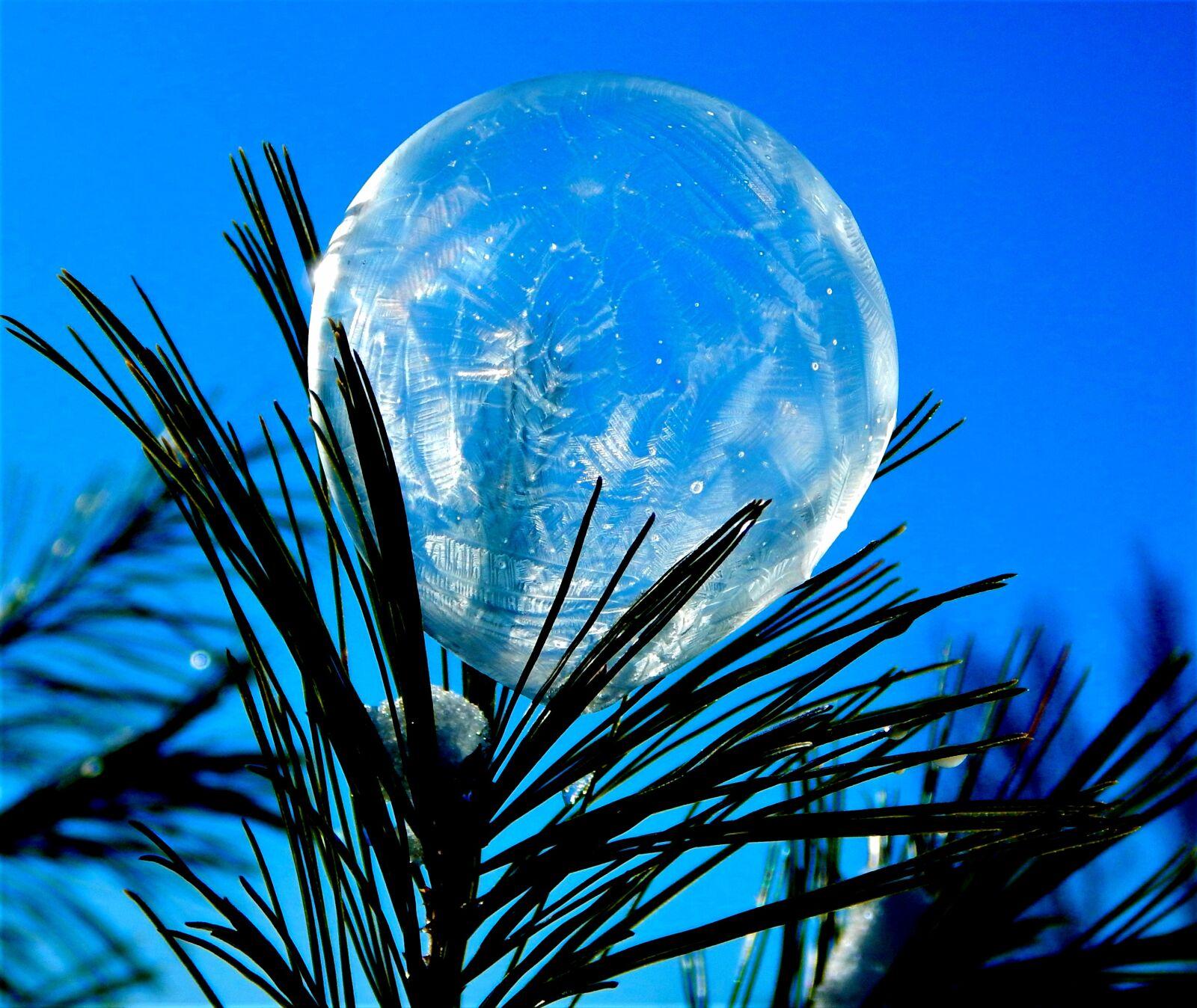 "Nikon Coolpix AW120 sample photo. ""Bubble, frozen, ice"" photography"