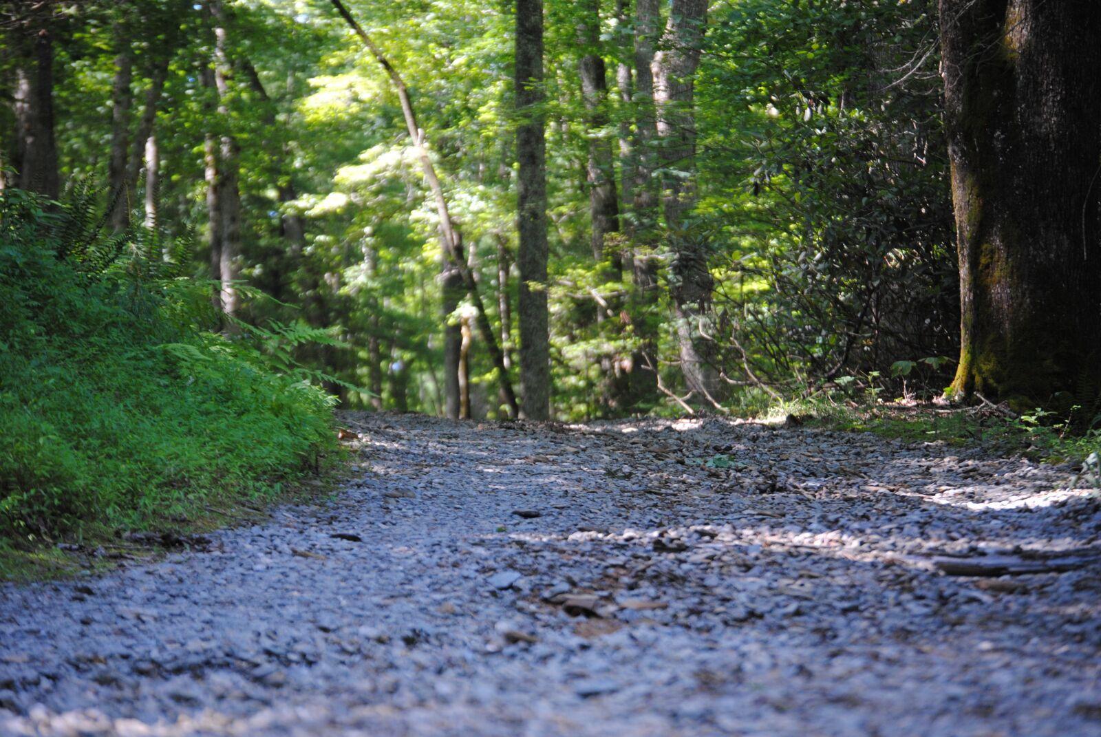 "Nikon D3000 sample photo. ""Road, gravel, nature"" photography"