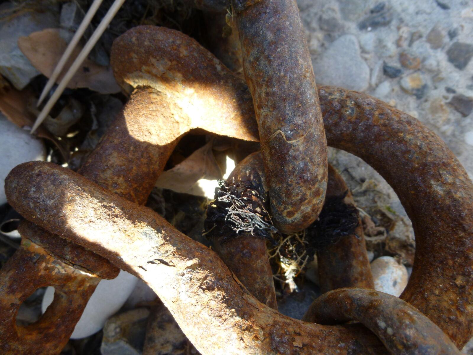 "Panasonic DMC-SZ3 sample photo. ""Beach, metal, micro, sea"" photography"