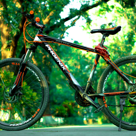 bicycle, blurred, background, green, Nikon D3200