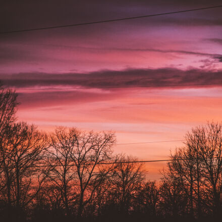 power, lines, sunset, trees, Canon EOS 7D