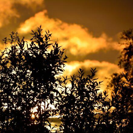 midnight, sun, nature, norway, Nikon D5200