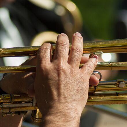 musician, music, artist, Pentax K10D