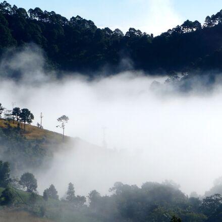 fog, landscape, mist, Sony NEX-6