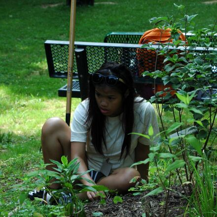 girl, student, volunteering, outdoor, Nikon D70