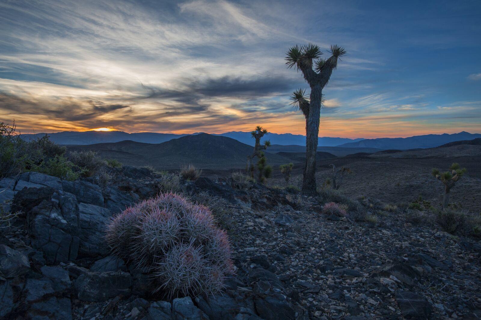 "Nikon D700 sample photo. ""Desert, death valley, california"" photography"