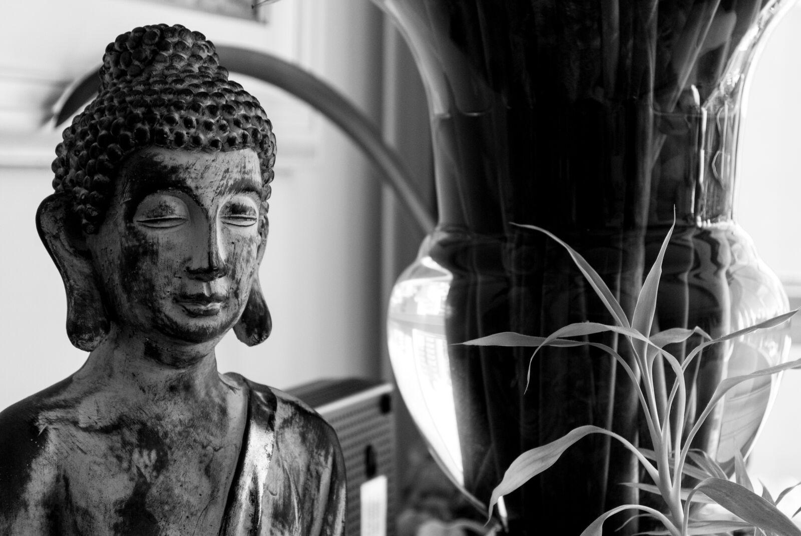 """Nikon D3000 sample photo. """"Buda, budah, budismo, decoracao"""" photography"""