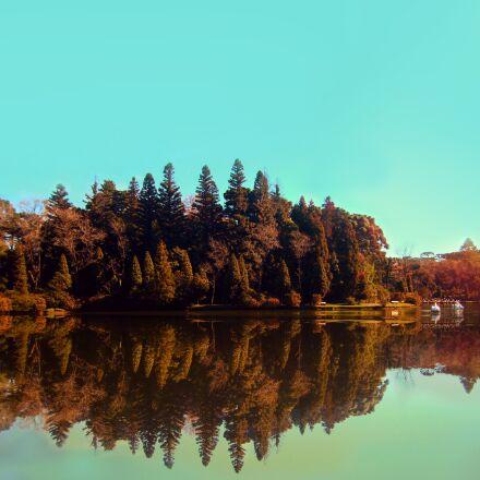 park, trees, nature, Sony DSC-W210