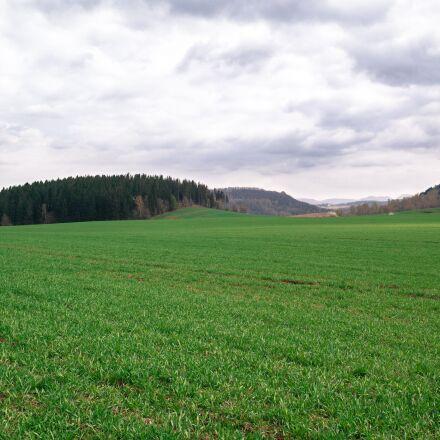 grass, meadow, nature, Samsung NX30