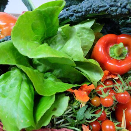 food, vegetable, in good, Fujifilm X-A1