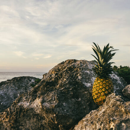 beach, clouds, fruit, landscape, Sony ILCE-7M2