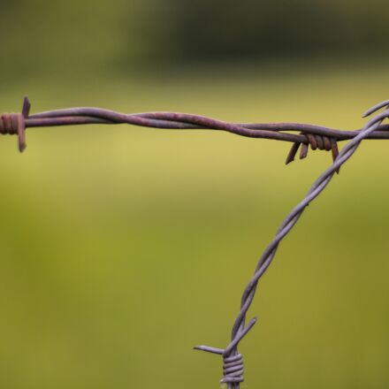 barbed wire, wire, fence, Canon EOS 700D