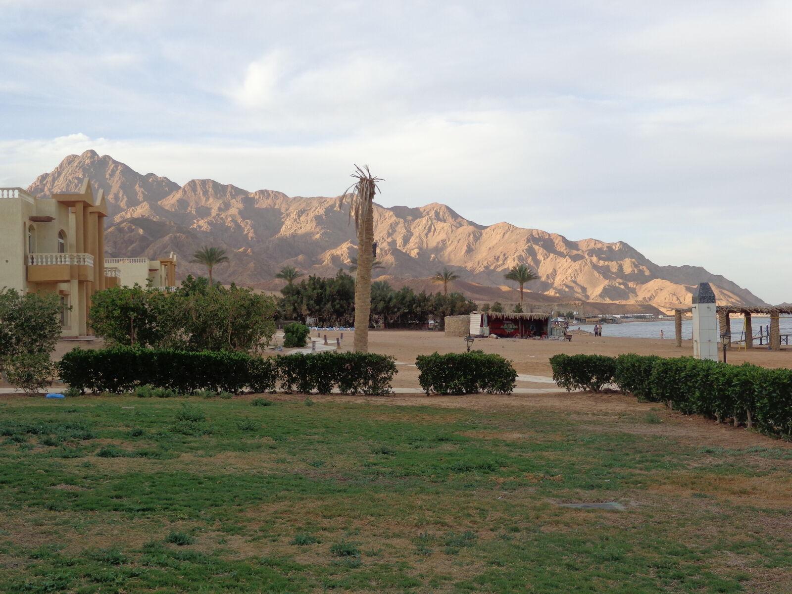 "Sony DSC-W690 sample photo. ""Beauty, egypt, mountain, palm"" photography"