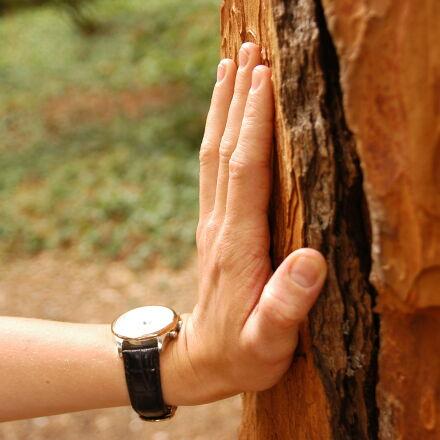 hand, hiking, hiker, resting, Nikon D100