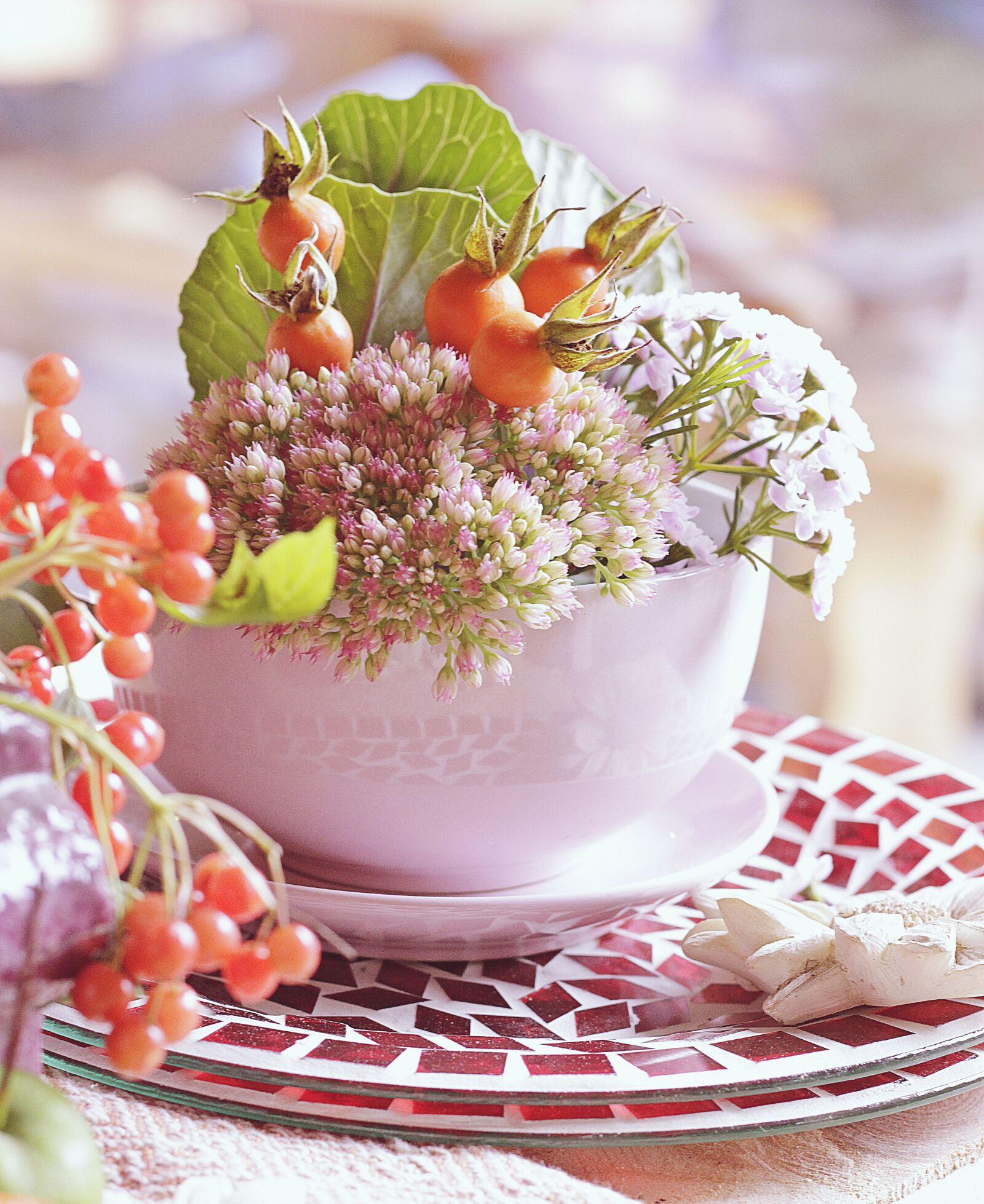 "Canon EOS 100D (EOS Rebel SL1 / EOS Kiss X7) sample photo. ""Autumn, table decorations, mood"" photography"