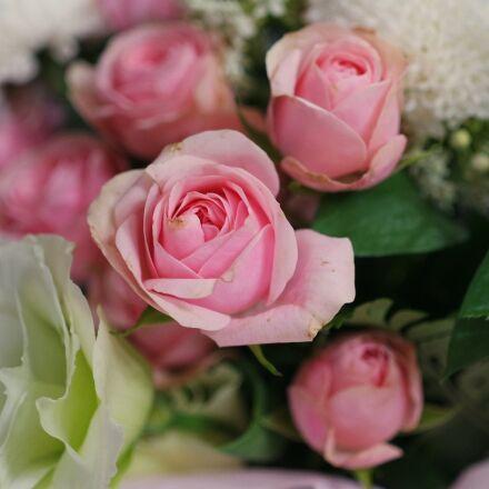 flowers, bouquet, pink, Samsung NX mini