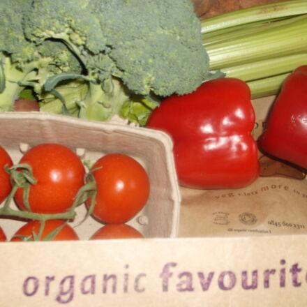 boxscheme, broccoli, organic, organic, Fujifilm FinePix AX550